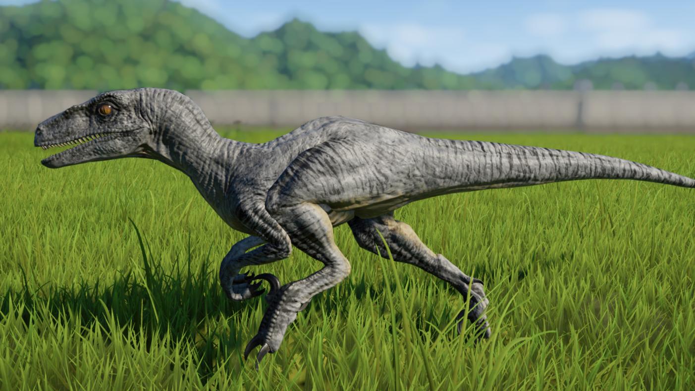 Velociraptor. in 2020