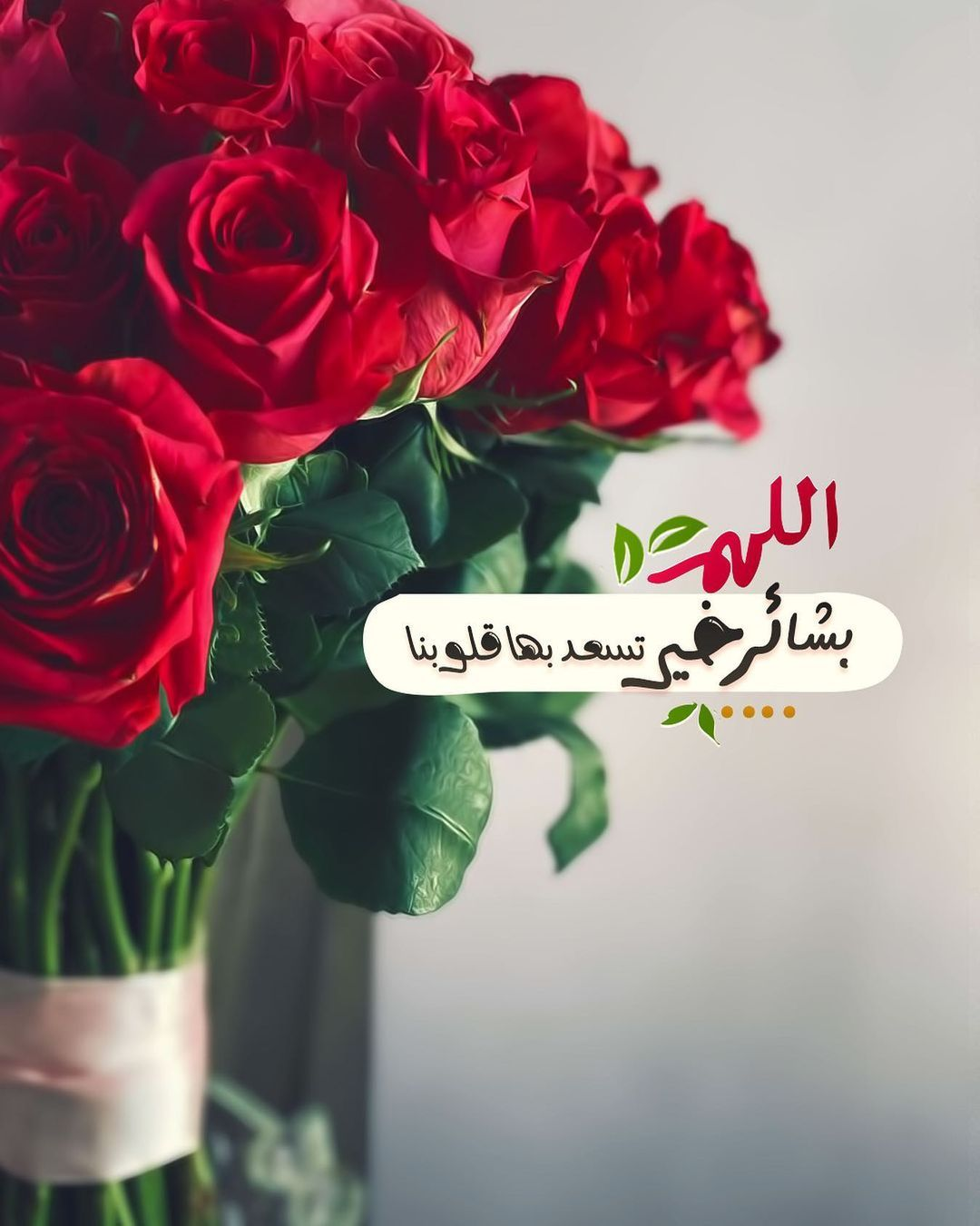 P E A R L A On Instagram الله م ب شائر خ ير ت سعد بها ق لوبنا ㅤㅤ ㅤㅤ ㅤㅤ صباحكم ب شائر خ ير In 2021 Good Morning Gif Islamic Pictures Cross Stitch Flowers