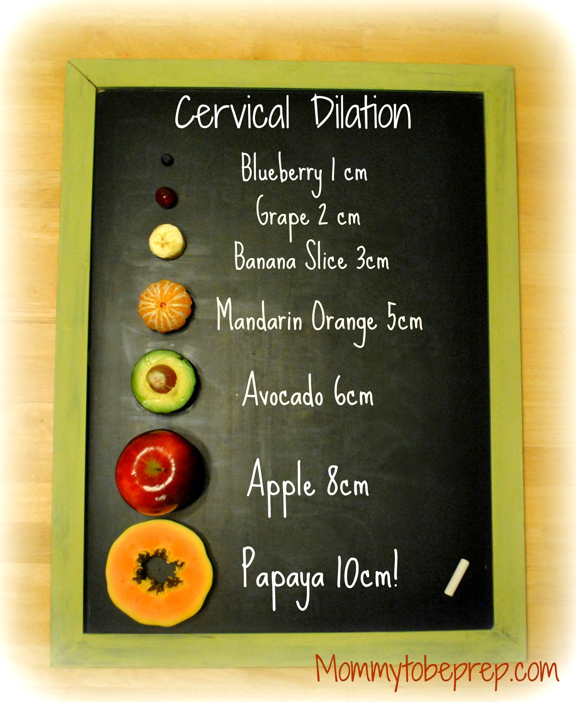 Cervical dilation for the visual learner find out more by cervical dilation chart for the visual learner nvjuhfo Image collections