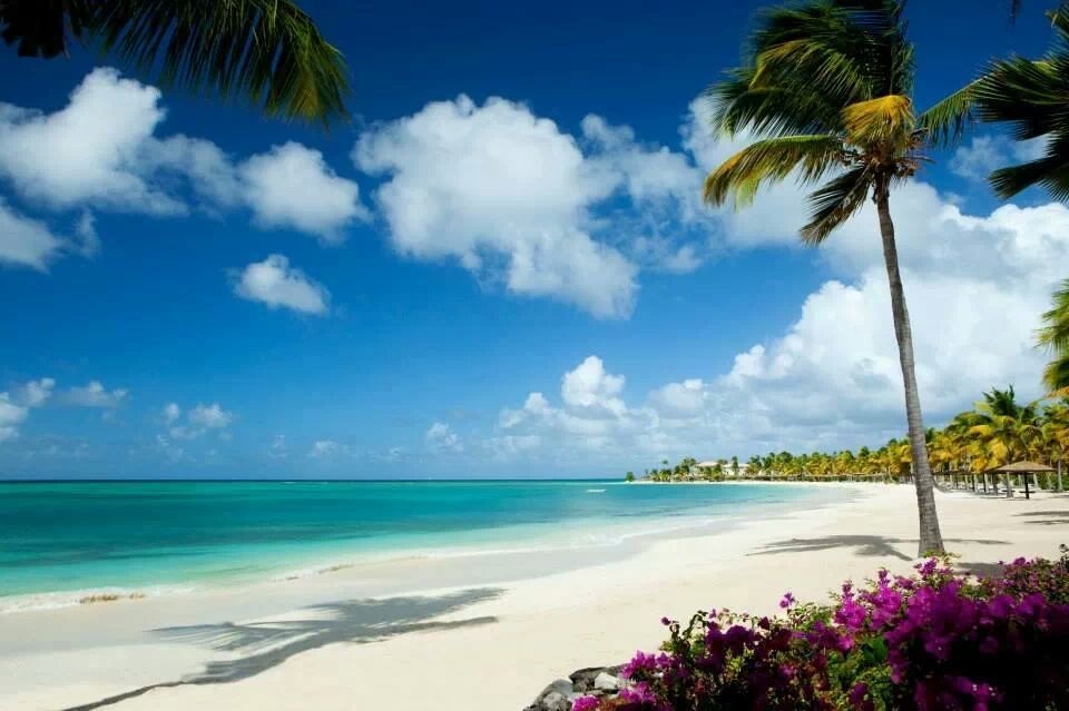 Antigua Great Tip: use ZOOM in right top corner! *** (photo by Caribbean Travel and Leisure)
