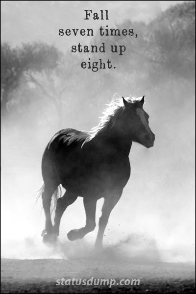Fall Seven Times Stand Up Eight Strength Quotes Horse