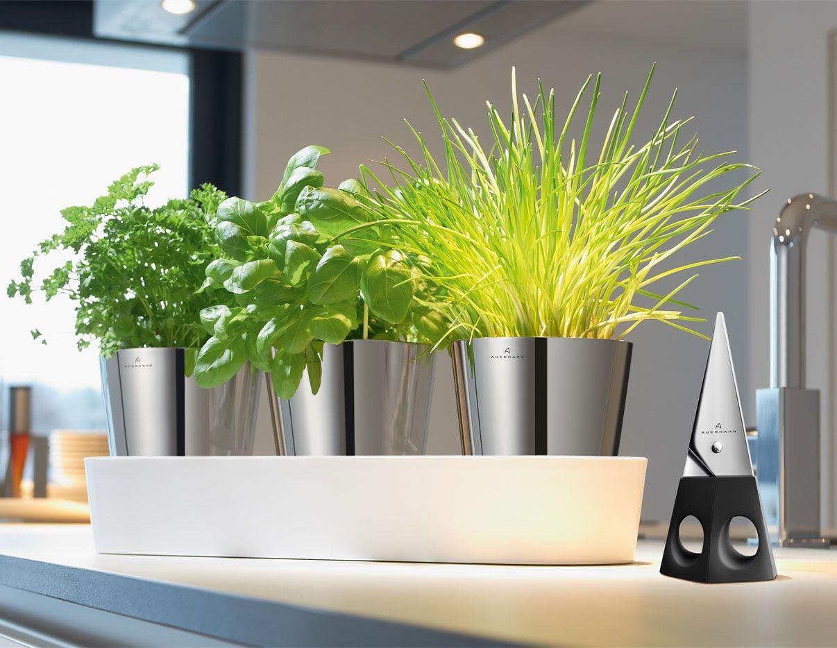 Auerhahn Herbs@Home Kräutergarten #Küche #Haushalt #Galaxus