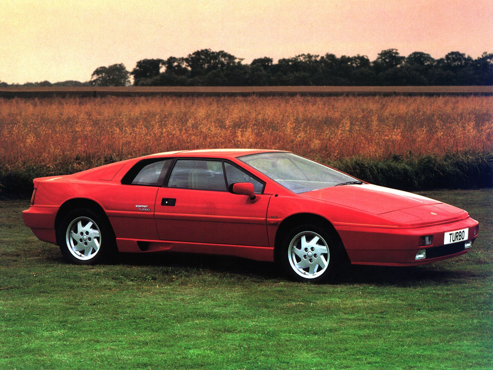 The 1980 Lotus Esprit Turbo Right Now 12 30 Only Dealer Near Middle Tennessee Is In Atlanta Ga They Also Lamborghini S