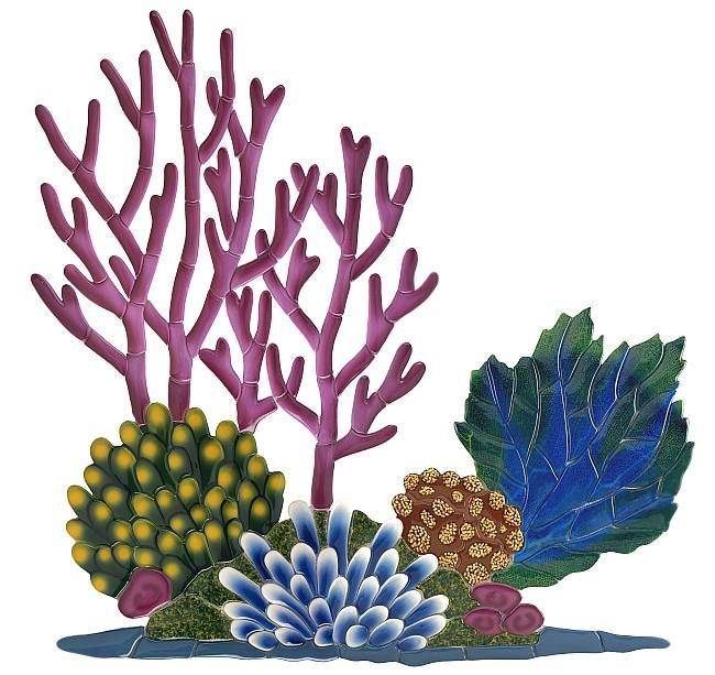 This Coral Reef Clipart is perfect for your task browse ...