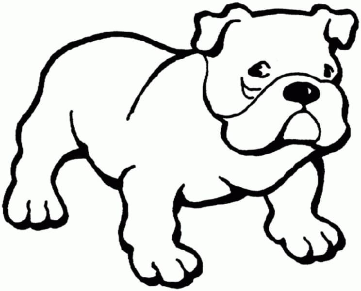 Animal Coloring Pages For Kids Dog Coloring Page Puppy Coloring Pages Bulldog Drawing