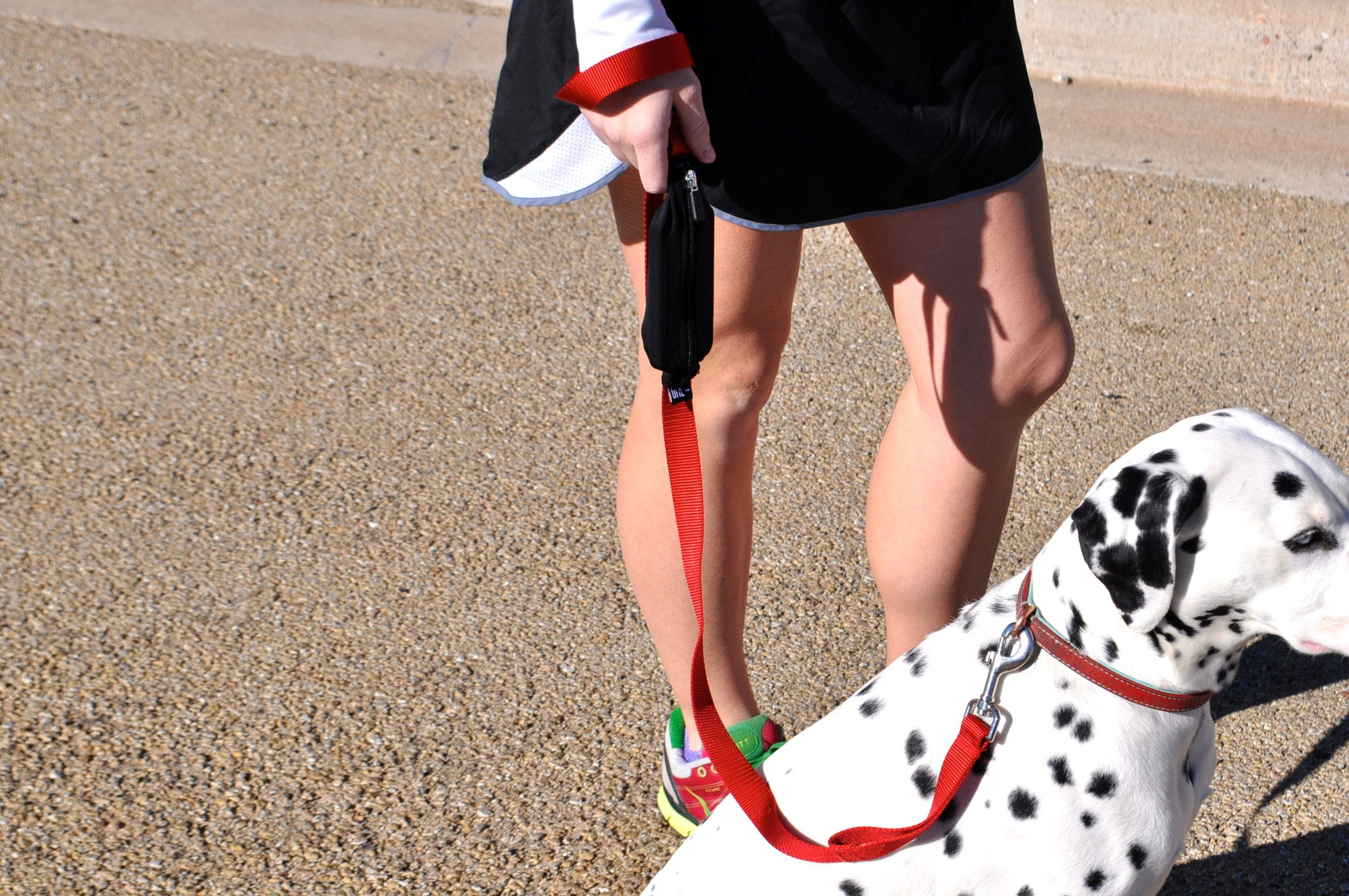 This is a wonderful addition to running with your dog!! This leash is heavy duty and is great to keep your dog controlled and near to you. This leash is great because it also has a pouch for your important items!
