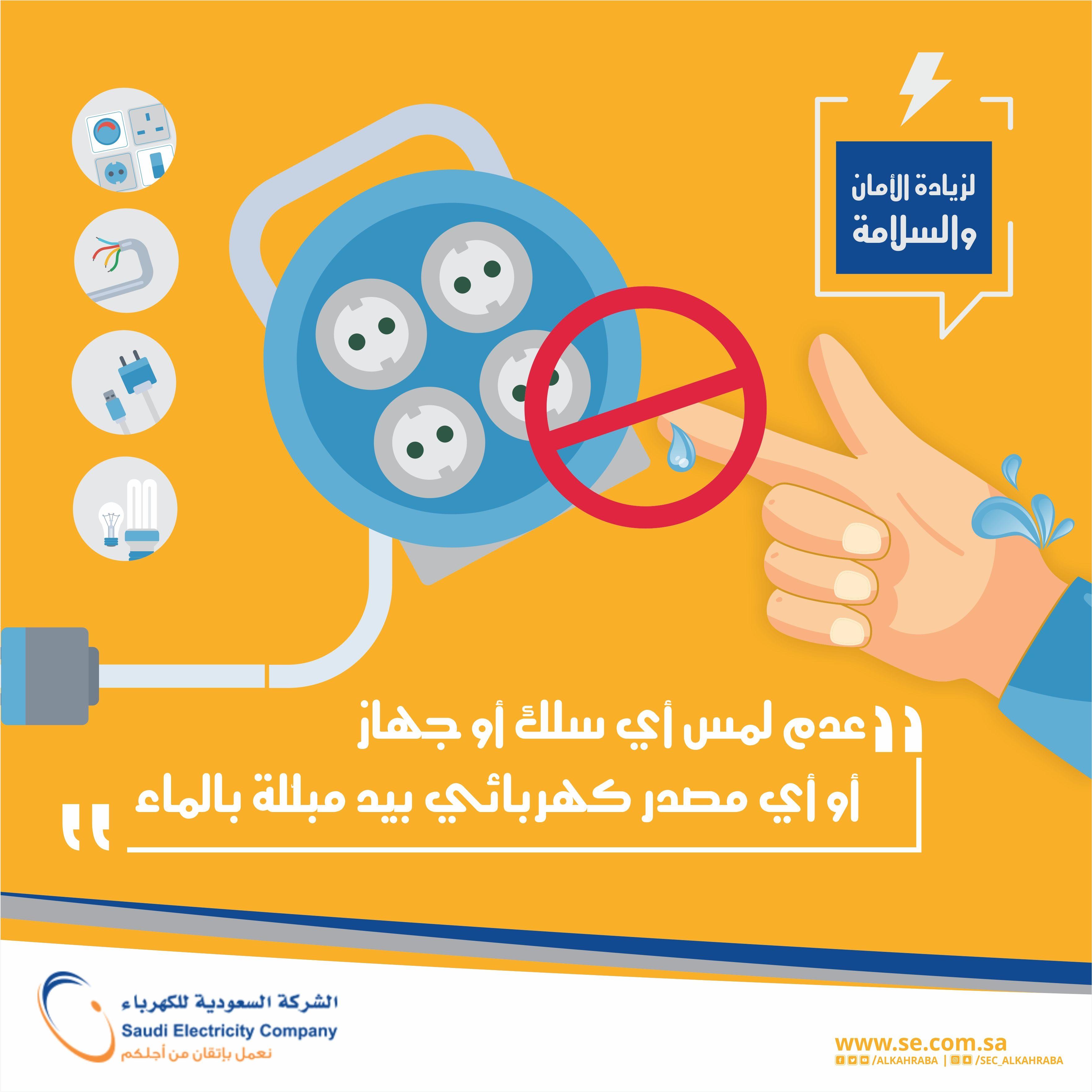 Saudi Electric