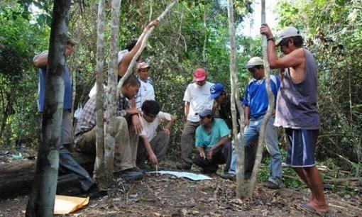 Especies en peligro de extinción   Animales en extinción   Perú   Especiales   LaRepublica.pe