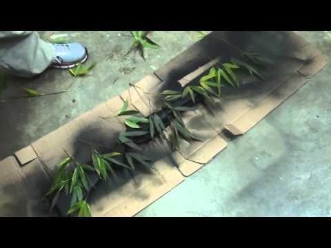 10 Camouflage Daisy Powerline 880 Spray Paint