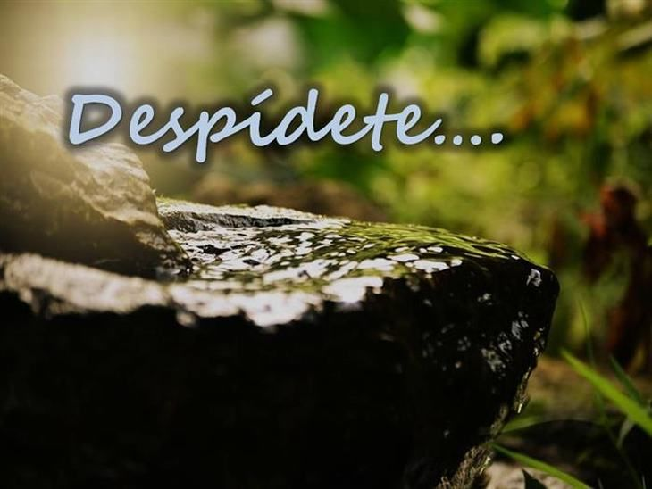 """Di """"adiós"""" a todo aquello que te hizo daño   Espiritualidad - Todo-Mail"""