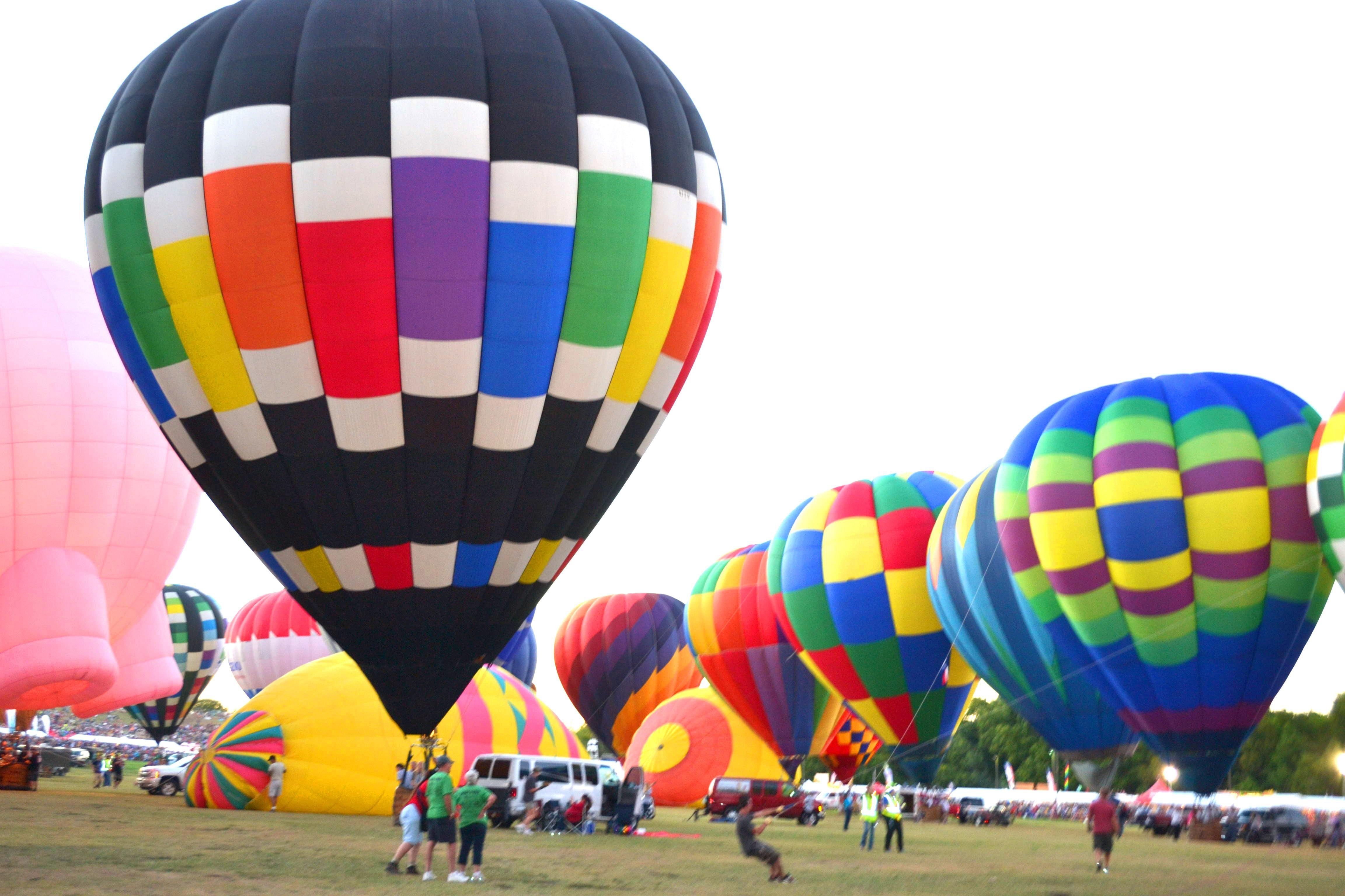 Chameleon hot air balloon will be flown by pilot David