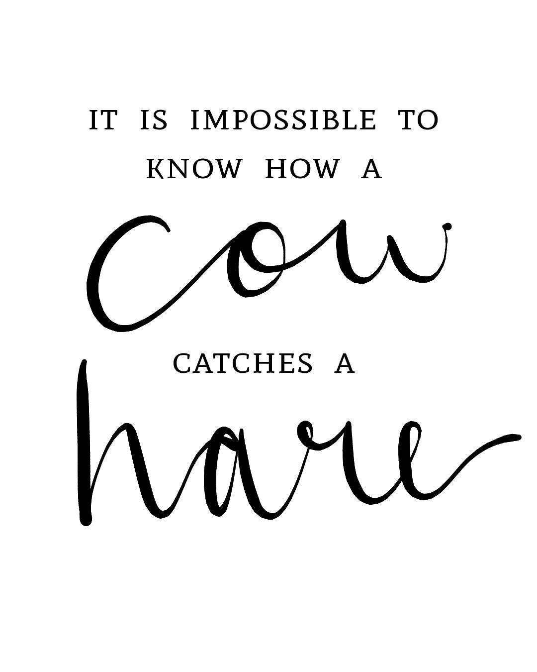 Amazing dutch idiom- it means that nothing is impossible