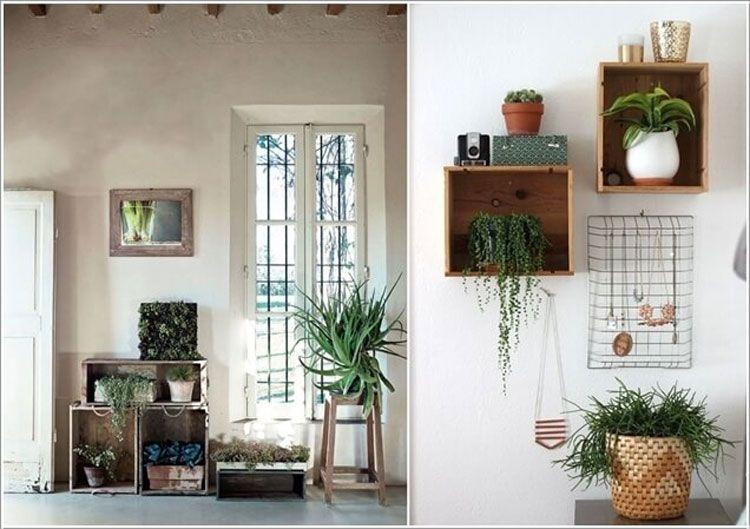 15 graziose idee per arredare con le piante piante in for Arredare casa con le piante