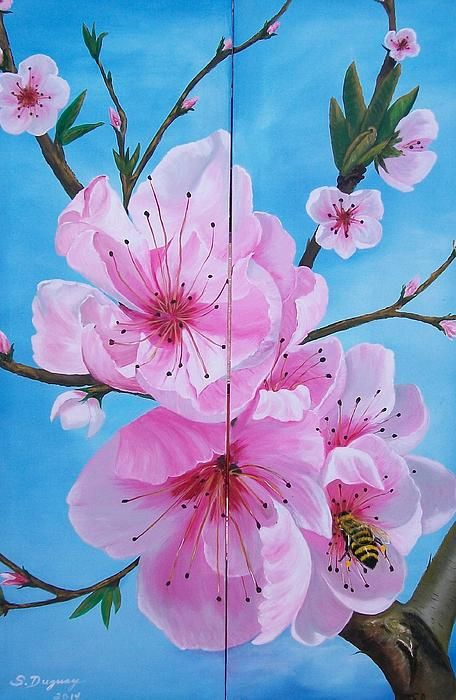 The Peach Prunus Persica Is A Deciduous Tree Native To North West China In The Region Between The Tarim Basi Peach Blossom Tree Diptych Art Flower Painting