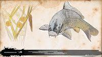 carpa común cyprinus carpio