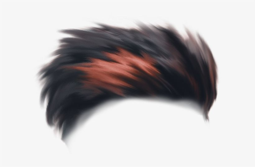 Download Independence Day Hair Png Picsart Independence Day Background Png Image For Free Search More High Qual Hair Png Picsart Independence Day Background