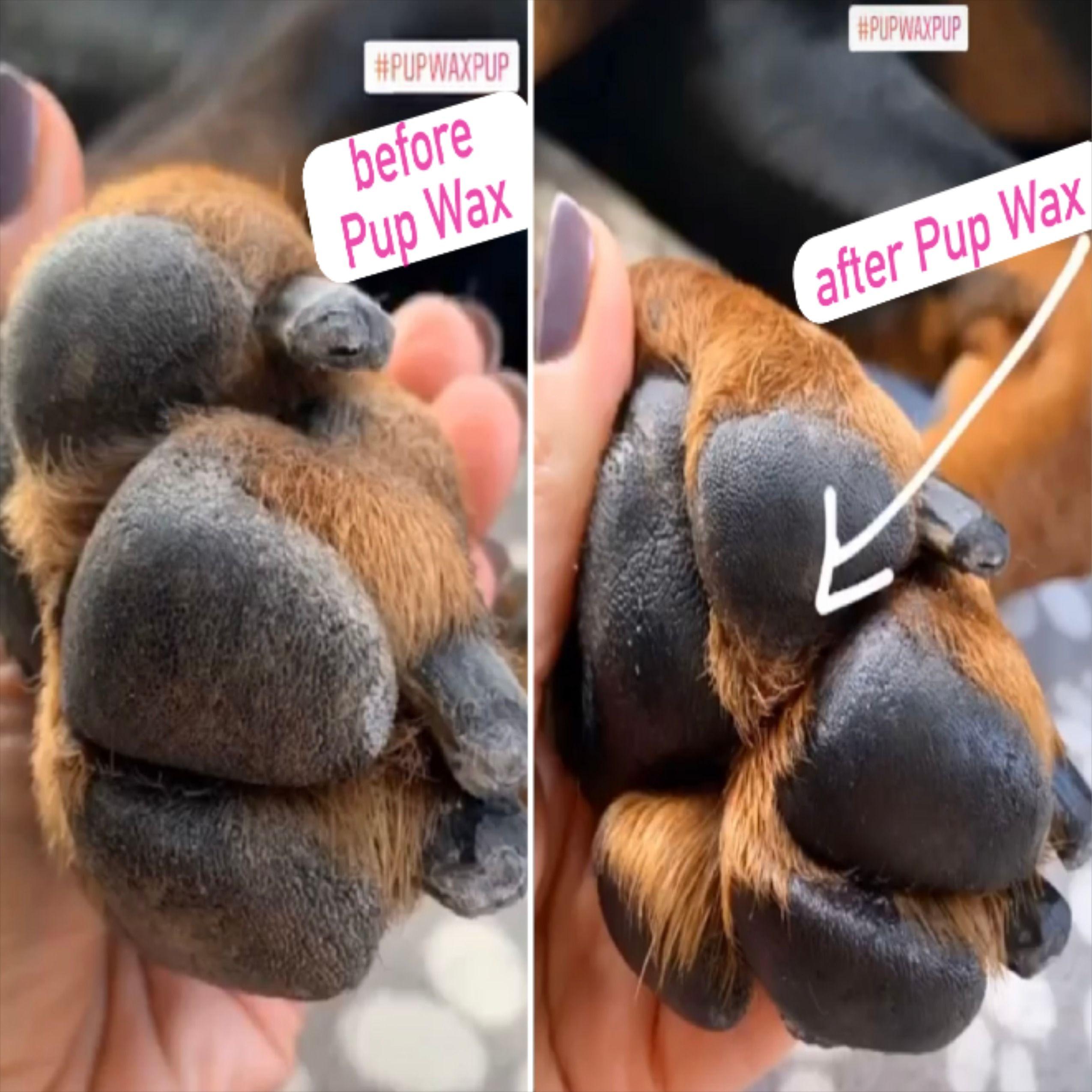 Pin On Pup Wax Organic Vegan Dry Dog Nose Skin Paw Tips