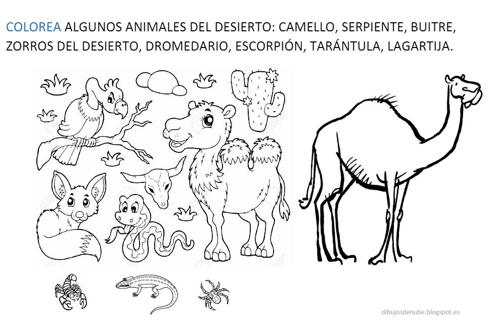 Resultado de imagen de proyecto infantil el desierto | África ...