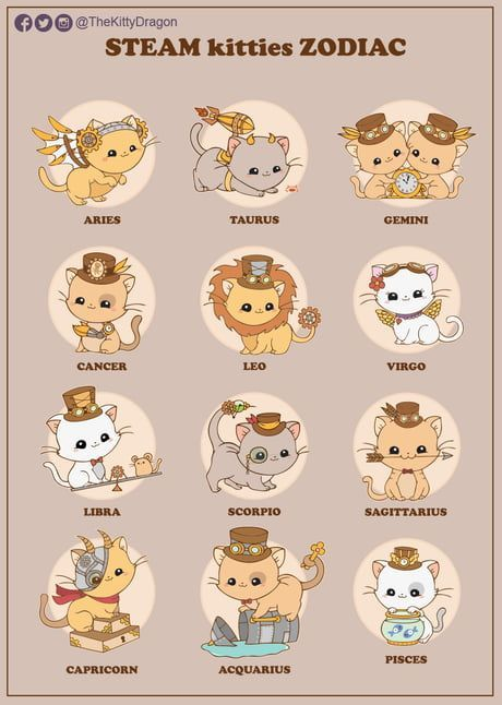 Steampunk kitties zodiac - #kitties #sign #Steampunk #Zodiac #zodiacsigns
