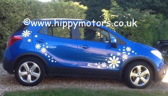 Crazy daisy car decals by hippy motors https www hippymotors co