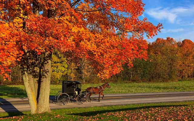 Ohio Counties With Amish Midwest Road Trip Ohio S Amish Country Country Magazine Amish