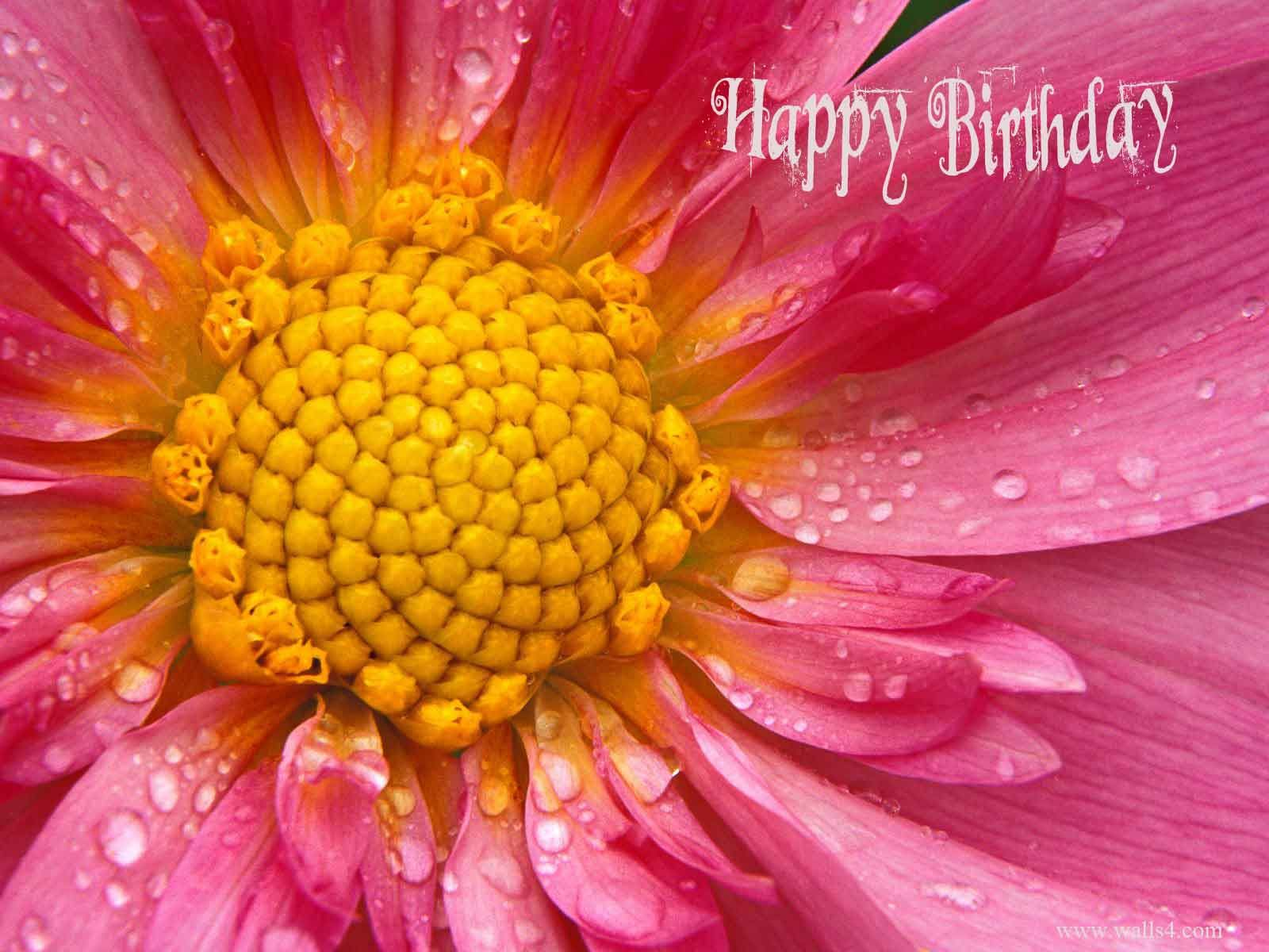 Pin By Darshan Kumar On Wishes Pinterest Flowers Happy Birthday