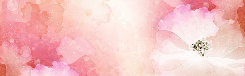 Hd Colorful Floral Banner Background Hd Bright Flowers