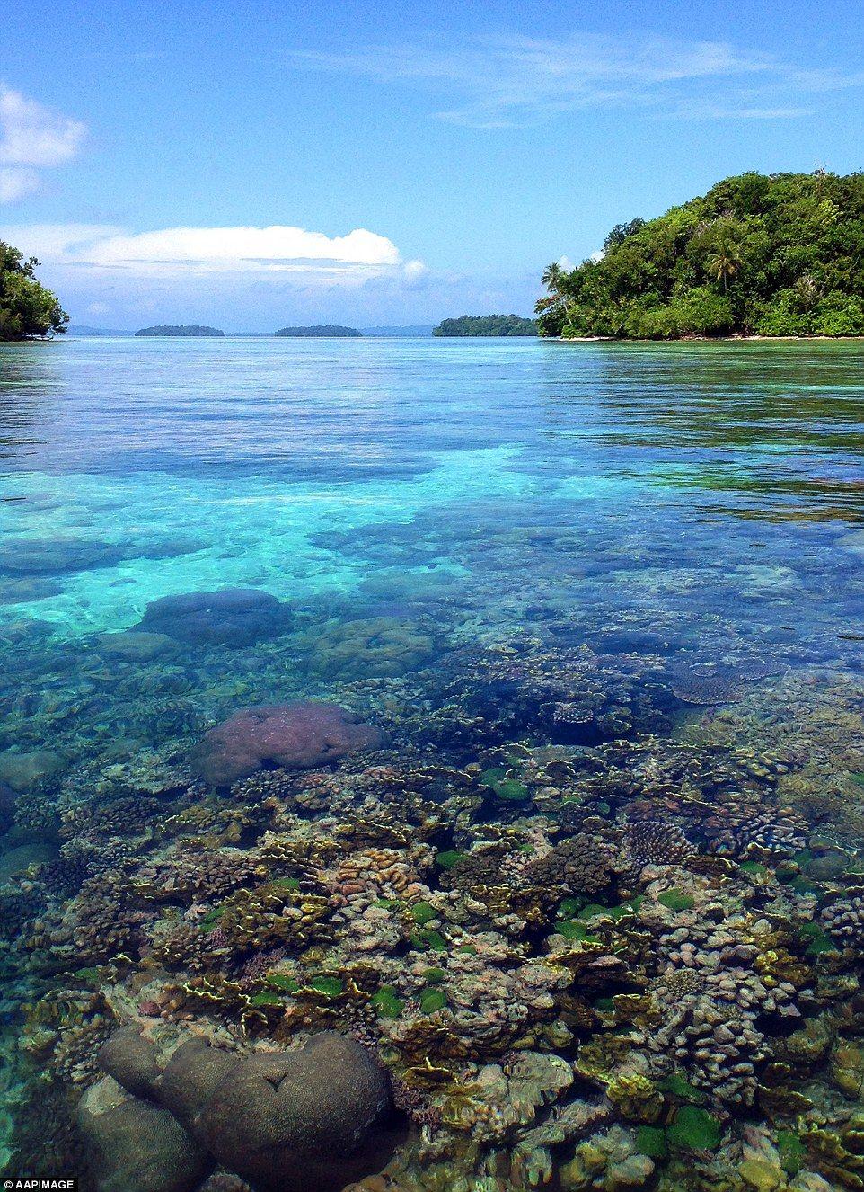 Munda Solomon Islands Accommodation