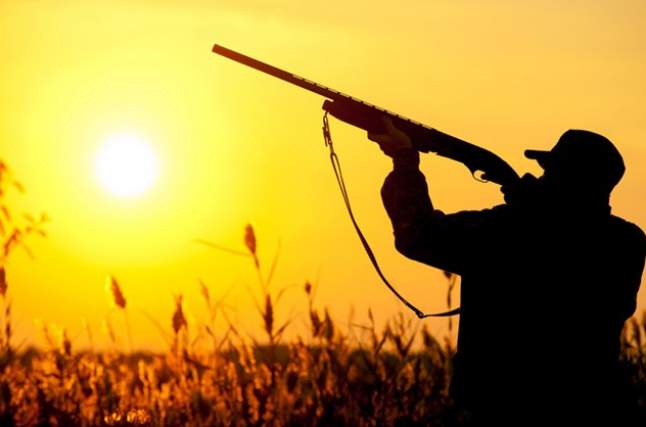 الصياد في المنام In 2020 Photo Beautiful Sunset Stock Photos