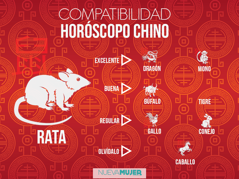 Compatibilidad De Signos En El Horóscopo Chino Horoscopo Chino Signos Del Zodiaco Chino Animal Horoscopo Chino