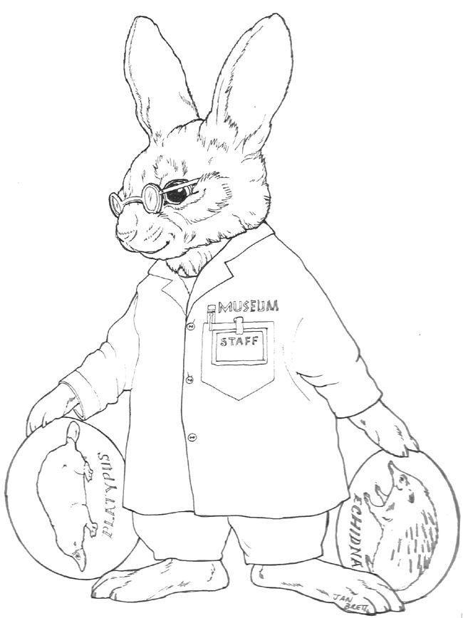 Biologist Solomon Bunny