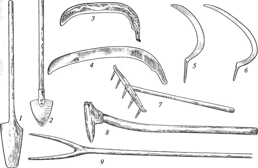 орудия древних славян картинки для животных