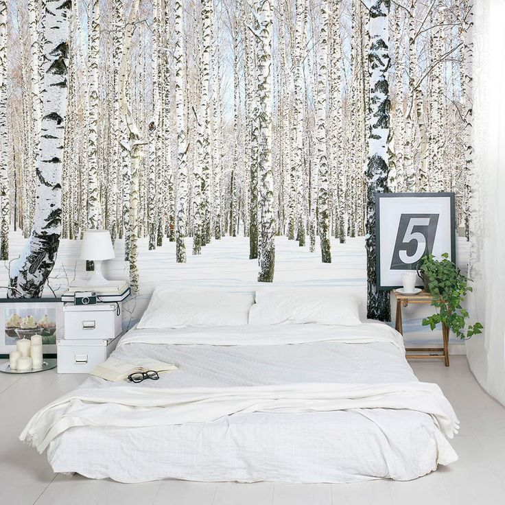 A winter wonderland right in your home! | Winter Birch Trees Wall Mural.