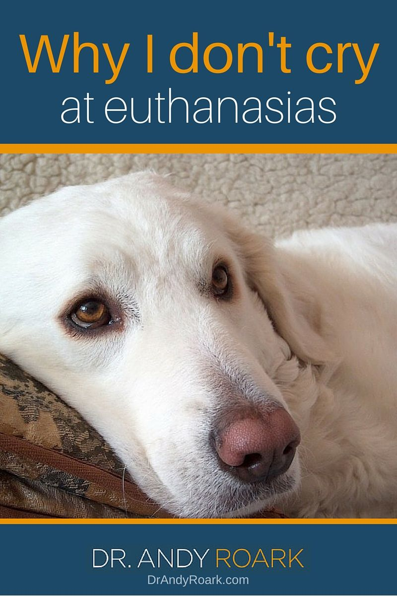 Should a veterinarian or vet tech cry at a euthanasia appointment