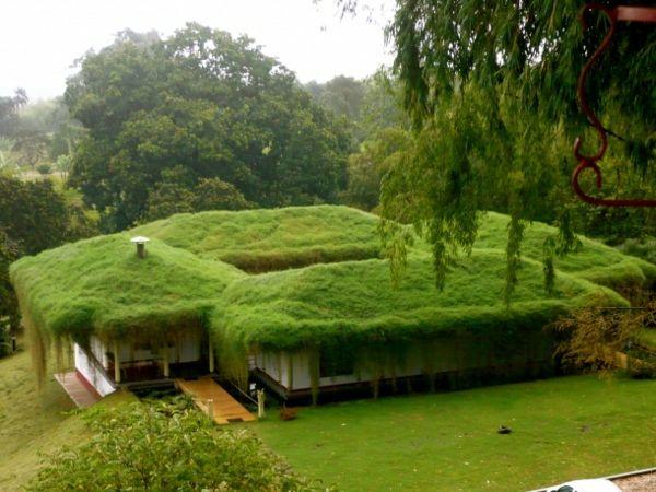 Dachbegrunung Gartenhaus Exterior In Grun Grune Architektur Ungewohnliche Hauser Erdhaus
