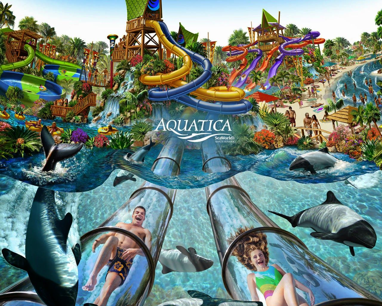 Amusement attraction seaworld aquatica orlando water park 2015 tour seaworld aquatica orlando water park 2015 tour and overview orlando florida jerrys hollywoodland amusement and trailer park gumiabroncs Choice Image