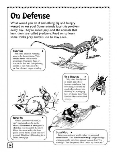 On Defense Predators And Prey Science Printables Life Science Lessons Life Science