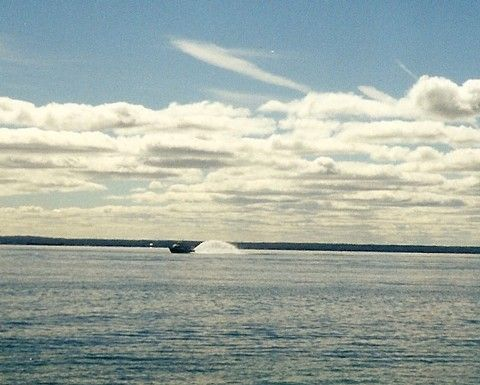 Chapter 10.  One of the ferries plying its route to Mackinac Island, Michigan, flinging its rooster tail of water up behind it.