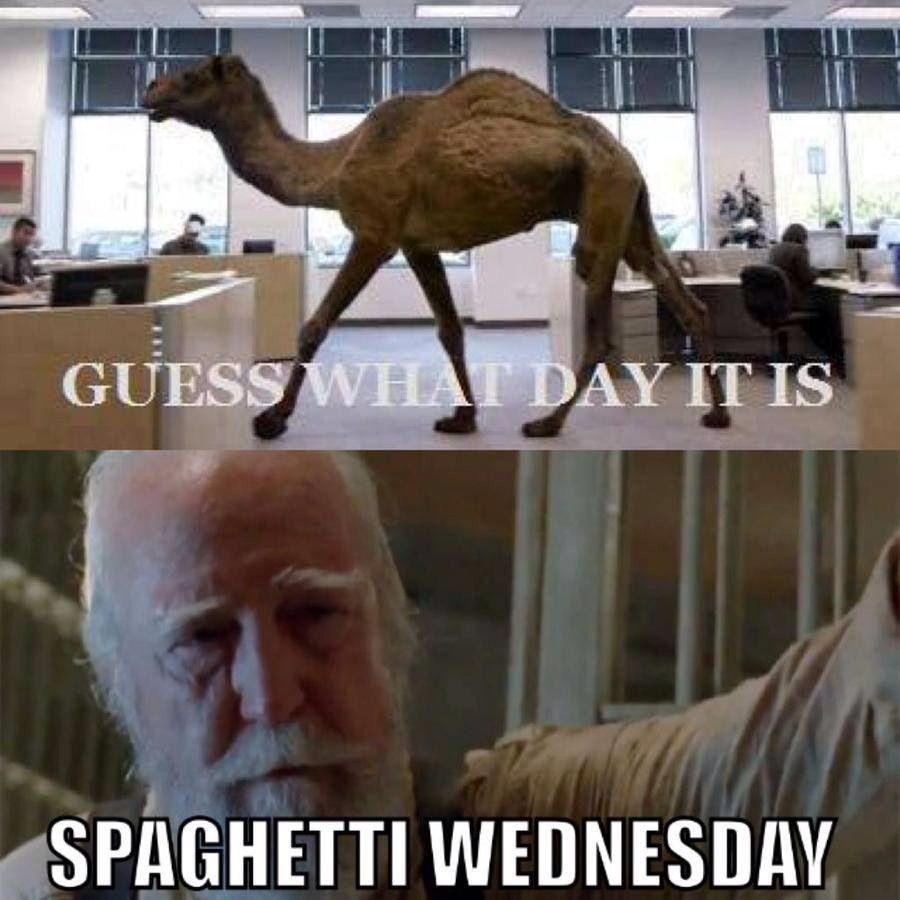 Spaghetti Wednesday Walking Dead Funny Walking Dead Memes The Walking Dead