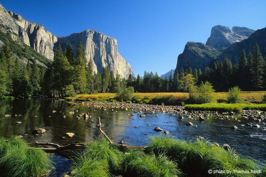 Yosemite National Park Yosemite National Park California Photo California Yosemite National Park California National Parks Yosemite