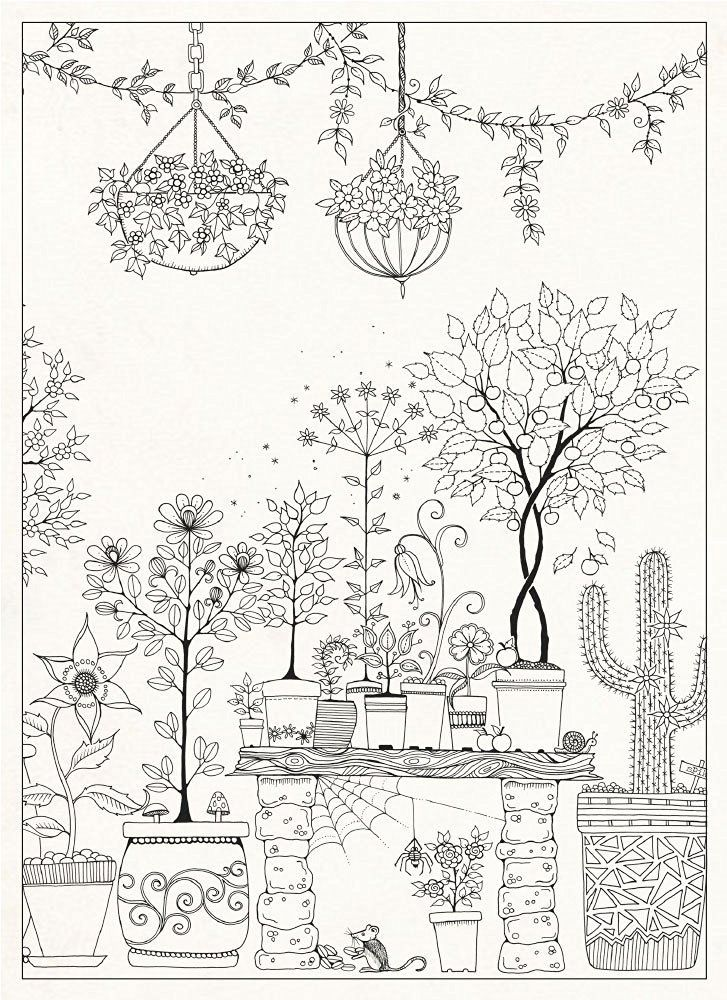 Secret Garden 20 Postcards Free Adult Coloring PagesSecret GardensPrintablesBeautiful DrawingsJohanna BasfordStressPostcardsDrawColoring Pages