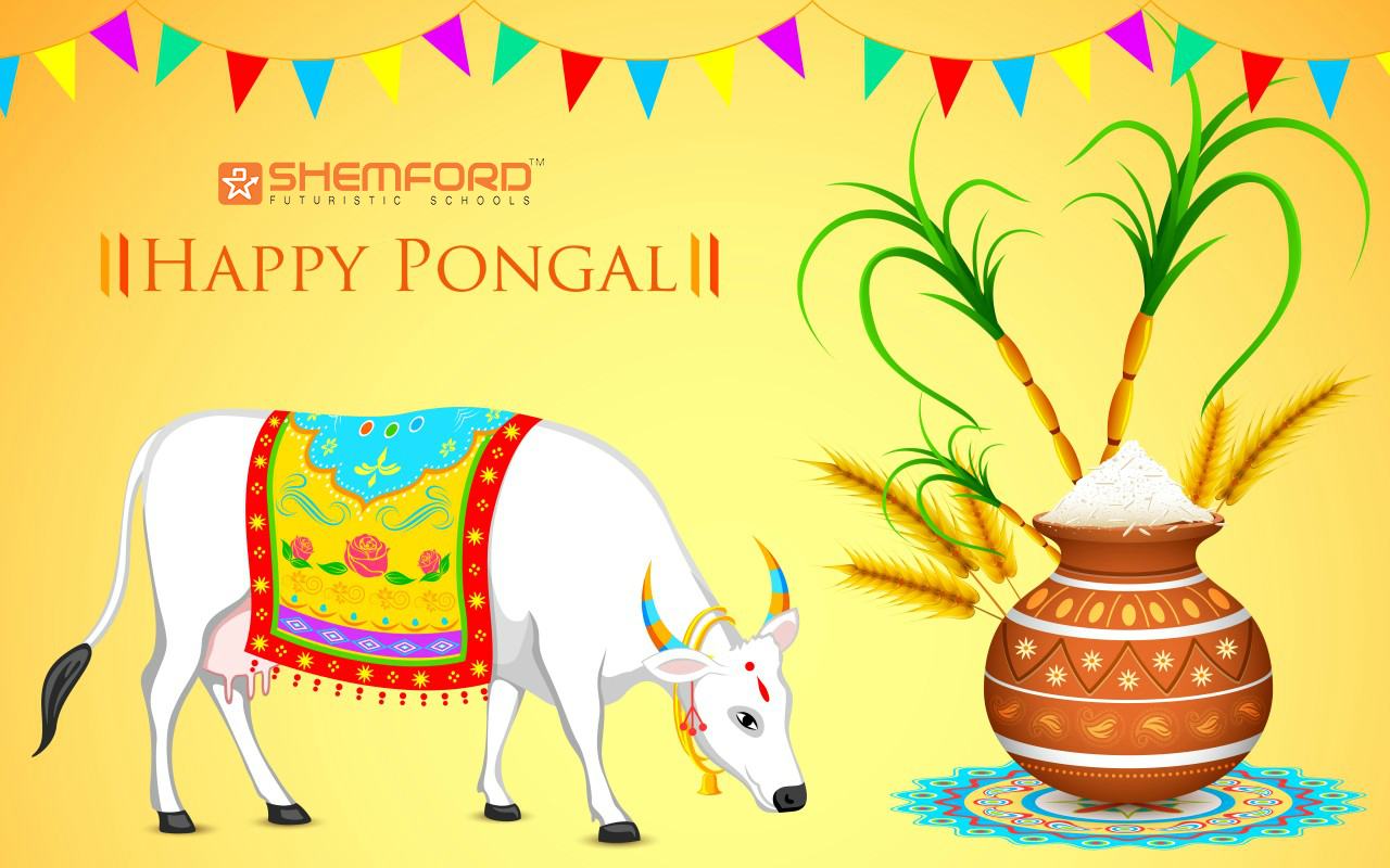 Pongal festival is most important festival for tamil people pongal happy pongal m4hsunfo
