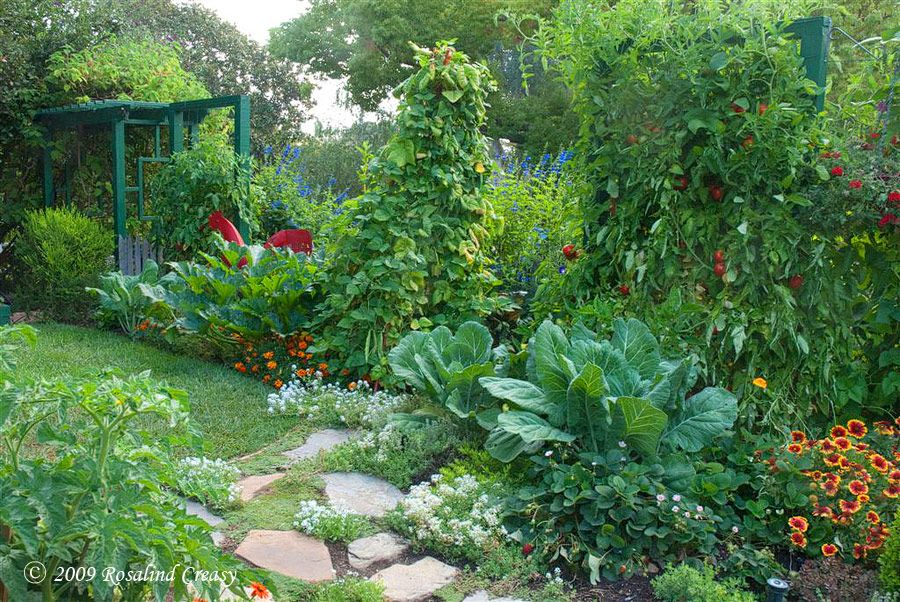 vegetable and flowers together Gardening Pinterest Edible