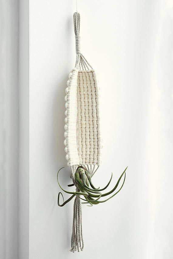 EARTH Macrame Air Plant Holder   Air Plant Hanger   Modern Hanging Planter    Indoor Planter   Minimalist   Airplant Gift   Tillandsia