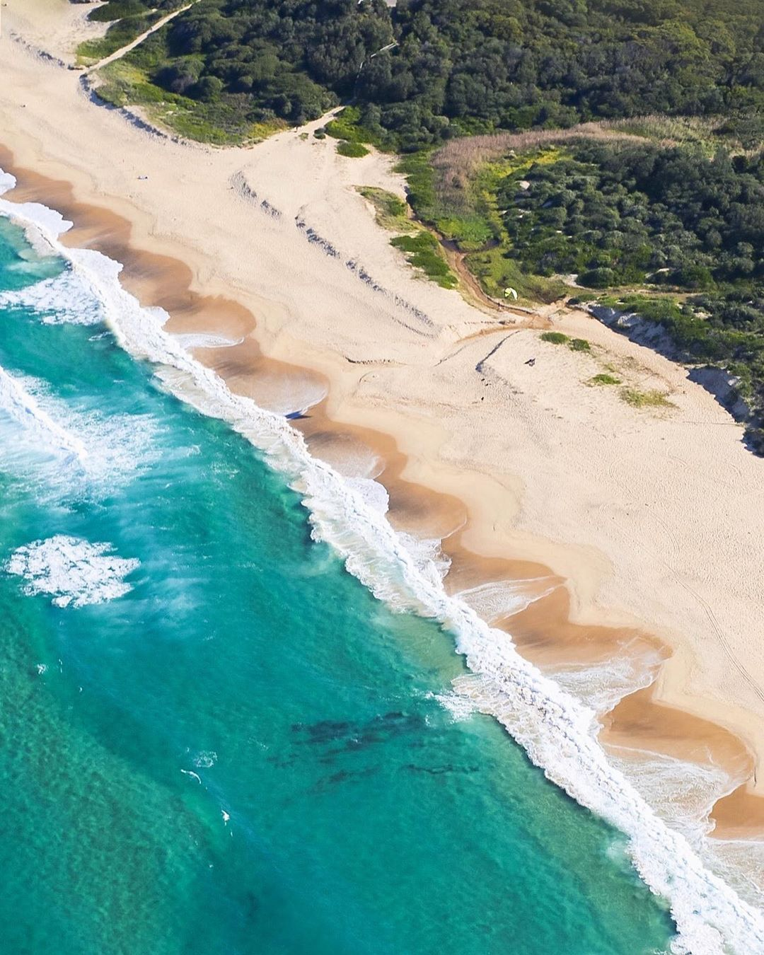 Wondering What The Fuss Is All About With Newcastle Nsw We Ve Found The Best 38 Things To Do In Newcastle That You Ll Newcastle Newcastle Beach Newcastle Nsw