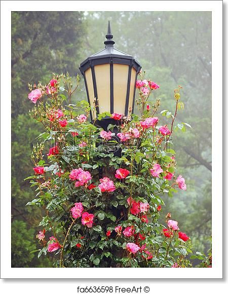Free art print of Lamp post and roses -   11 english garden quotes ideas