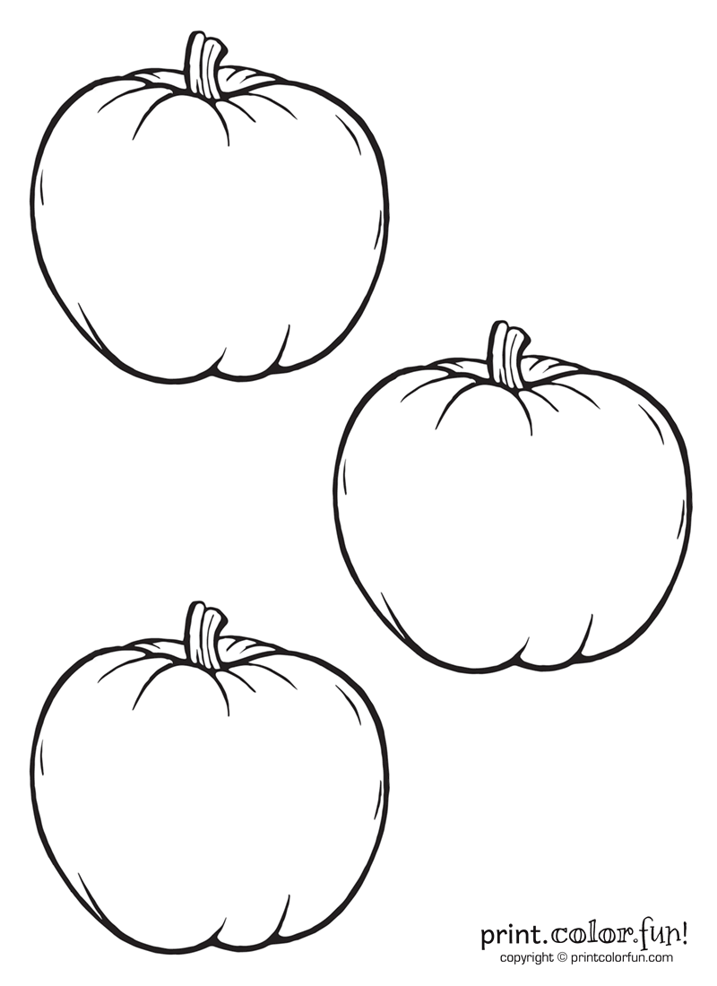 3 little pumpkins coloring page print