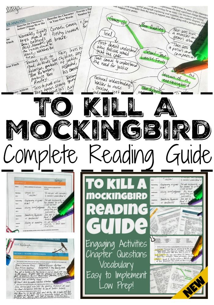 to kill a mockingbird key passages