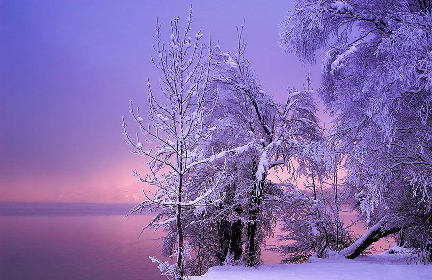 Heart Touching Magical Snowy Landscapes Priroda A Svet