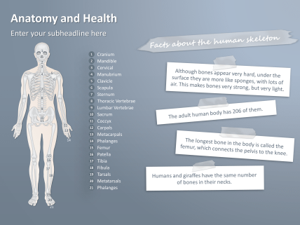 Free Anatomy Powerpoint Templates Powerpoint Template Free